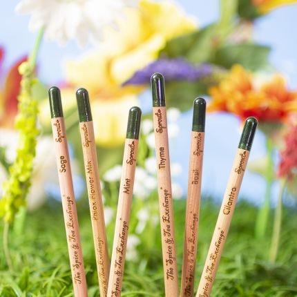 Herb Garden Pencil