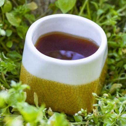Set of 2 Mango Crackle Teacup