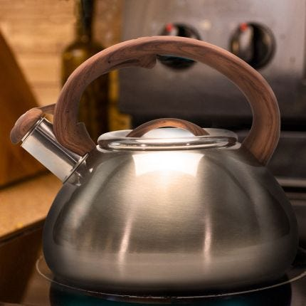 Gunmetal Whistling Tea Kettle